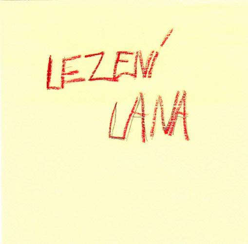 2-a-2-b-zs-lesni-liberec-7